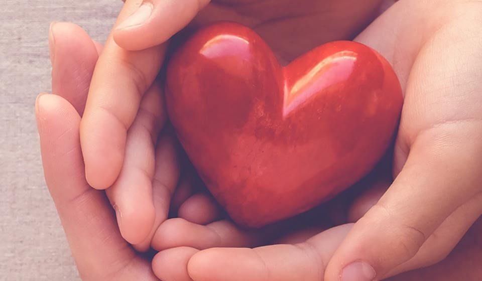 O Coração Inteligente tiago curcio