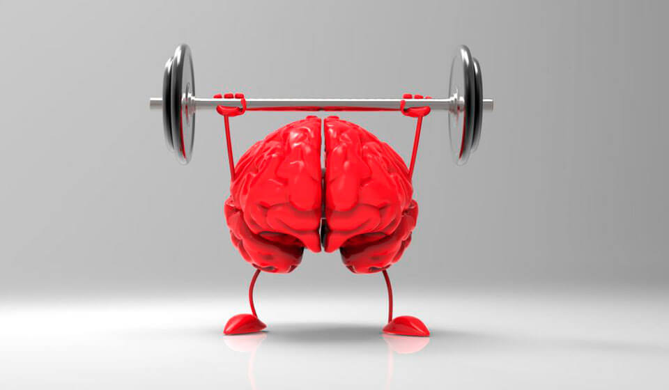 Pensamento Rápido – Treine Seu Cérebro Diariamente